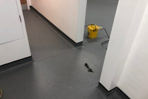 Altro Stronghold Flooring at Queniborough Primary School